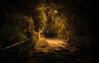 Осень в городе. город пейзаж осень листва природа