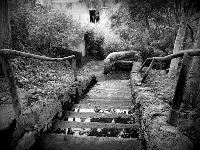 """из серии """"Лестницы моего города"""""""