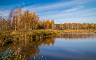 Снова осень :) 06