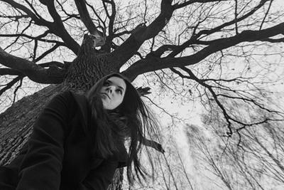 Беспокойство. 3. девушка лес ветер беспокойство тревога дерево ветви портрет