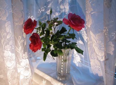 *** Розы букет цветы