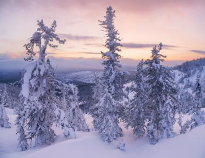 ...Зимним вечером...