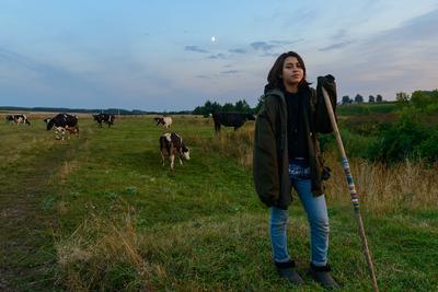 Пастушка... Август стадо вечер