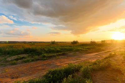 Путь путь поле закат родина