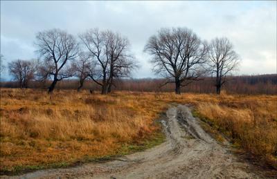 Есень грудня четвертого на бреге Чумыша-2.