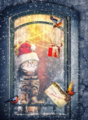 Рождественский подарок коллаж фотоарт фотошоп Рождество подарок