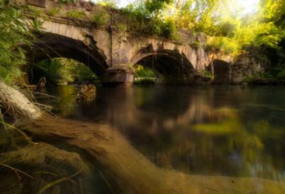 """""""Много воды утекло..."""" Акведук река лес лето крым вода"""