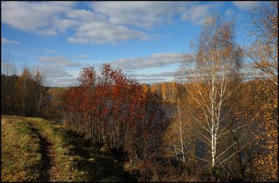 *** осень желтые листья река