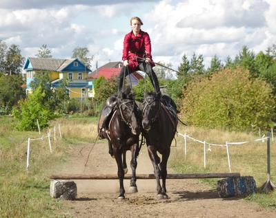 Прыжок стоя на лошадиной паре казаки лошадь наездник джигитовка