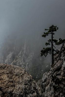*** Крым пейзаж горы