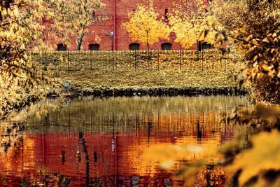Осень золотая осень город река Санкт-Петербург Кронверкский проток