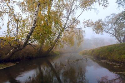 Текла неслышно речка сквозь туман... осень туман река утро
