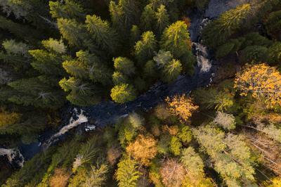 Карельский Инь и ян Карелия водопады Karelia Waterfall осень