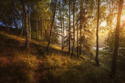 Запахом утра наполни свой день озеро горы лес природа закат рассвет красота приключения путешествие