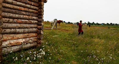 Из прошлого Переслвль -Залесский рыцарь лошадь конь лето Александрова гора природа