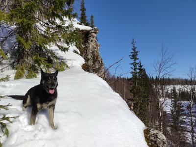 На скалах Джинтуя Печора Коми Мороз
