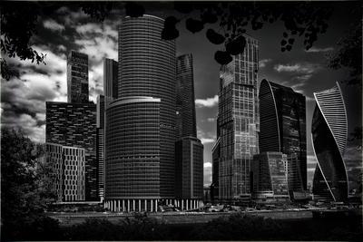 *** город Москва сити черно-белое