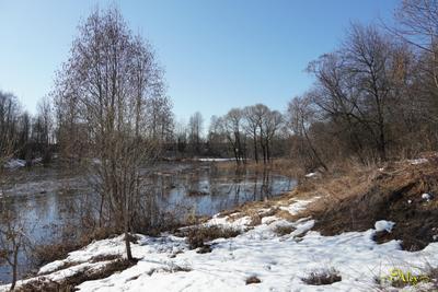 Пришла весна весна река снег утро природа пейзаж
