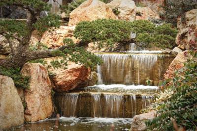 Водопад и бонсаи.