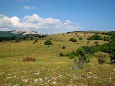 Байдарская яйла яйла байдарская плато