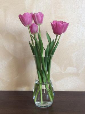 Тюльпаны на 8 марта тюльпаны 8 марта