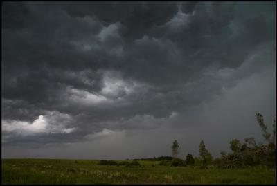 Перед грозой россия московская область тишинка поле