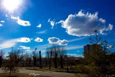 *** небо Челябинск деревья город