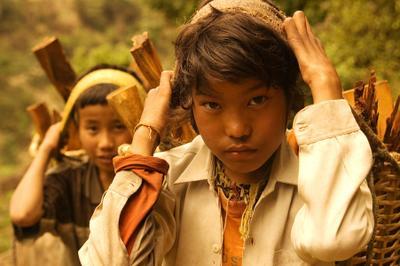 отец слышишь рубит? непал, портер, дрова