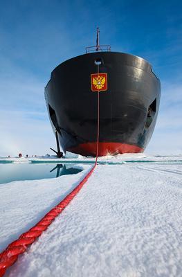 На верёвочке арктика