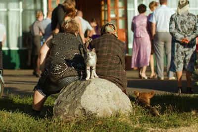 под прикрытием кот кошка бабушка бабуля бабки россия старина деревня