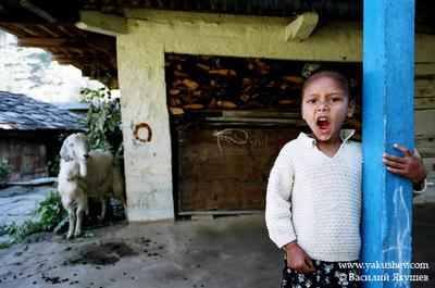 *** Индия 2006 Индия
