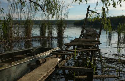 В Днестровских плавнях