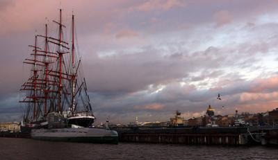 Санкт-Петербург накануне нового года Барк Седов Нева