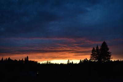 Удивительный закат в Зеленограде закат небо парк солнце лес