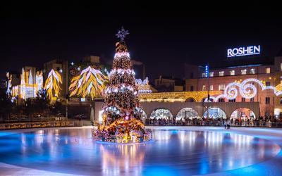 йолка. Новый год йолка город Киев