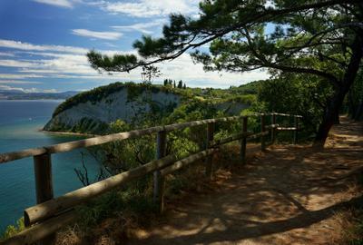 Залив Лунного света Словения Струньян море Адриатика сосны горы залив