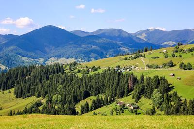 Карпаты летом. горы Карпаты Верховина природа