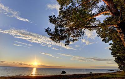 Финский залив - 2 Сосновый Бор, Ленинградская область, Финский залив, вода, камни, закат