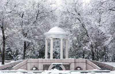 Зимний парк ростов ростов-на-дону город архитектура зима снег