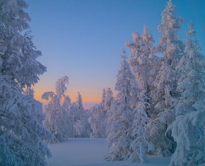 Зимний вечер. заполярье крайний север Ненецкий автономный округ