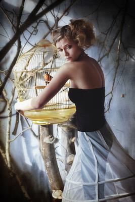 Save портрет жанр девушка птица