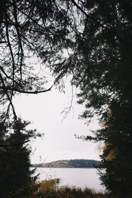 Ладога озеро лес природа путешествие карелия