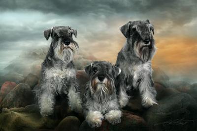 Hildebert's Family Digital Photo Art Dog Kennel Hildebert s Eltons Fantasies