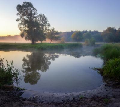 Утро на реке Волчья пейзаж природа туман река волчья