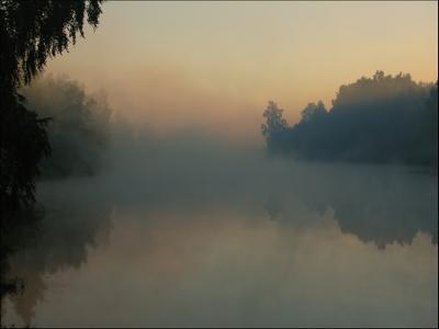 Туман над Плюссой