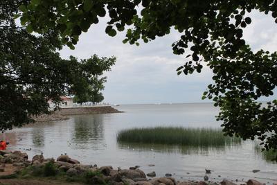 Залив залив природа пейзаж