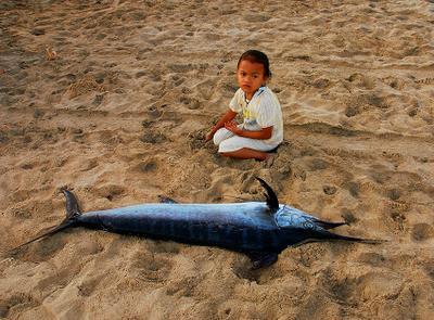 Марлин рыбаки, дети, рыба, марлин