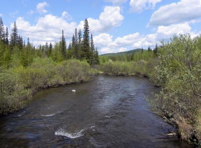 Таёжная речка Сибирь лето вода река горы небо