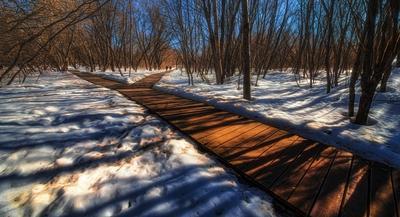 Развилка. весна парк дорожки снег люди