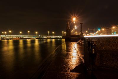 От сфинкса до грифона Санкт-Петербург вечер река отражение сфинкс грифон мост